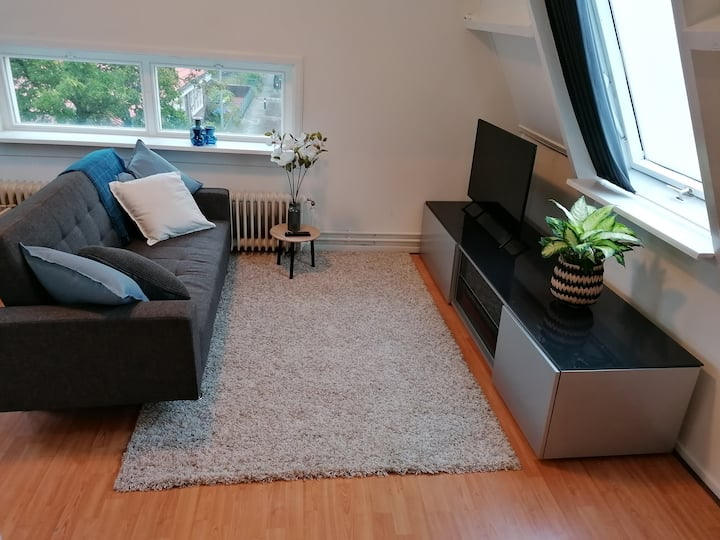 Modern apartment 20 min from Amsterdam