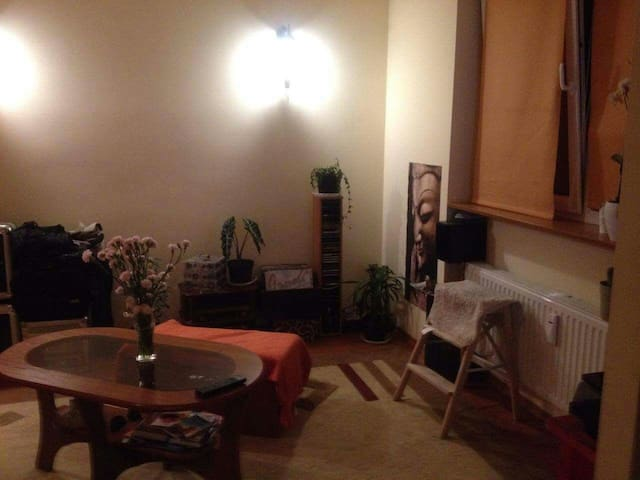 Cozy apartment near center-whole flat. Or room 10$ - Bielsko-Biała - Apartamento