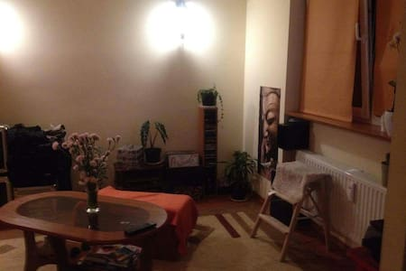 Cozy apartment near center. Room or whole flat. - Bielsko-Biała - 公寓