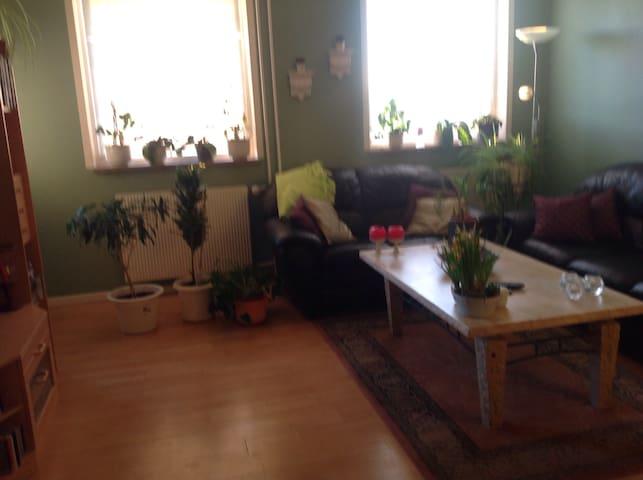 3 værlset lejlighed - Køge - Apartment