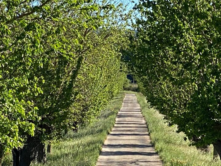 Magnifique Hameau viticole BIO de TRIANS privatisé