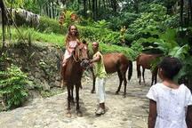 Horse treking at JPD