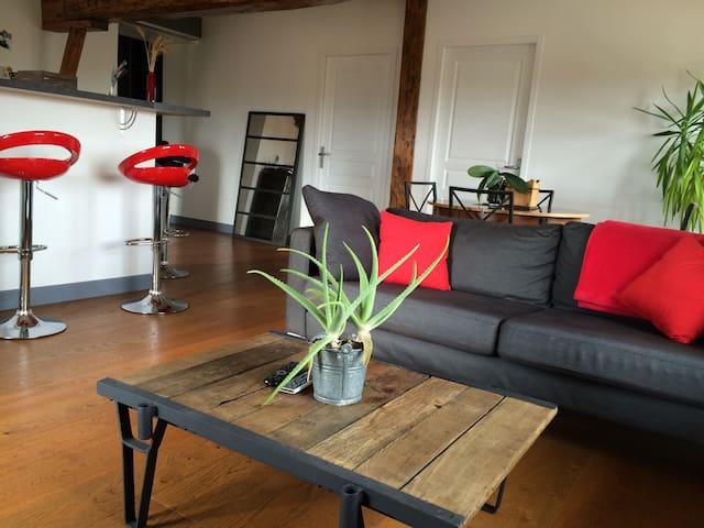 Une chambre à la campagne - Vernaison - Apartment