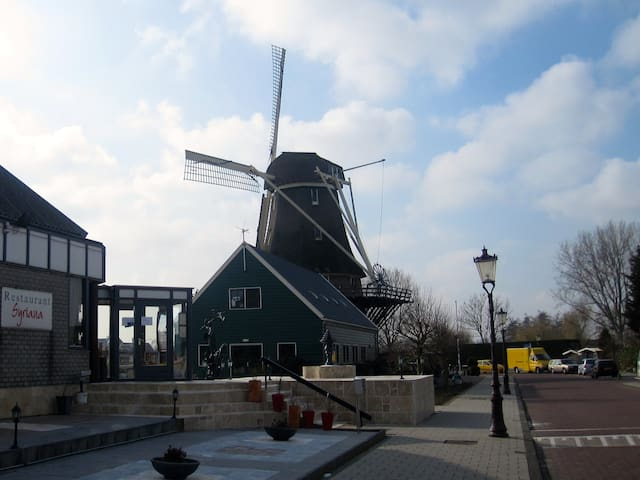 Charming house in green area, free parking - Amsterdam - Huis