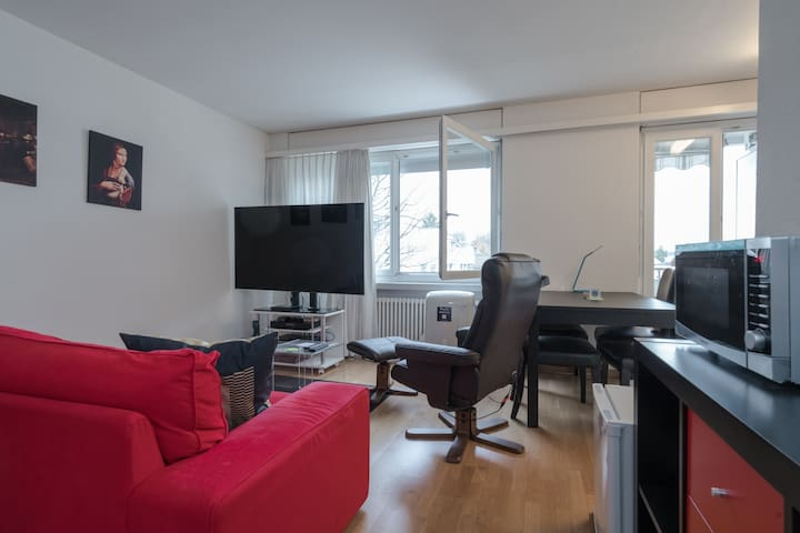 Luxury Studio near Oerlikon
