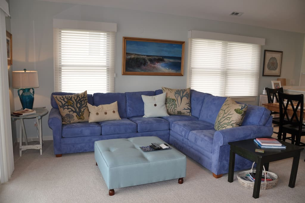Tasteful and comfortable living room with pull-out sofa. New hardwood laminates have been installed.