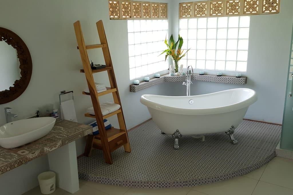 Bathtub and shower room