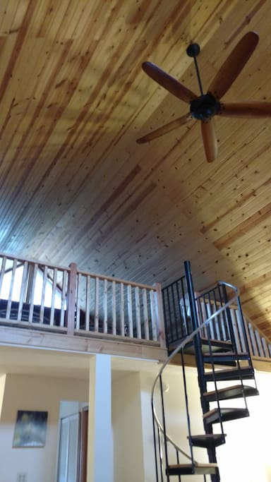 Tongue and Groove Pine ceiling, sleeping loft, and spiral staricase
