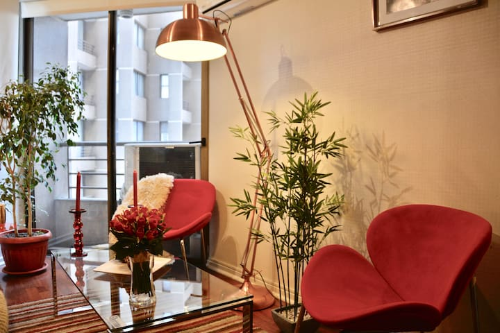 Fine Apartment Bellas Artes/Lastarria (King Bed)