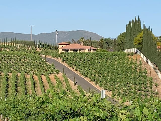 Temecula Villa in the heart of wine country!