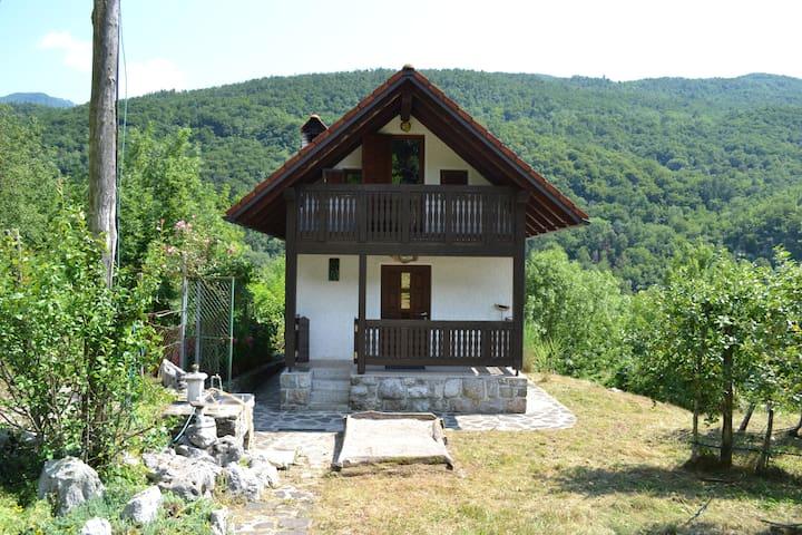 Hiša v sadovnjaku - Borjana