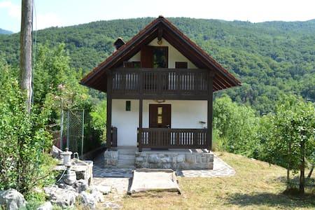 Hiša v sadovnjaku - Borjana - Hus