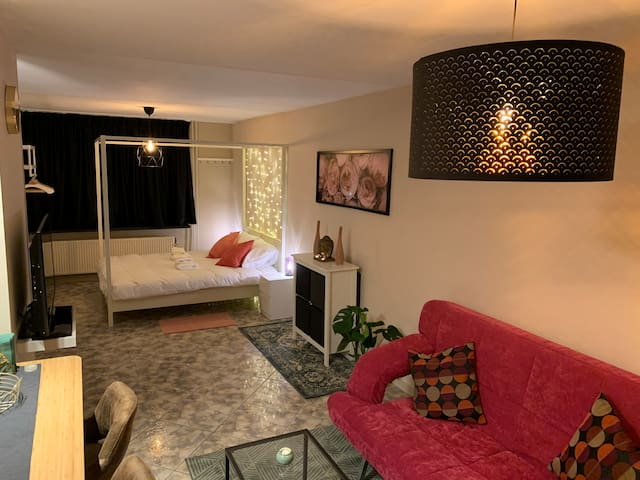 Apartement with garden in the city of The Hague.