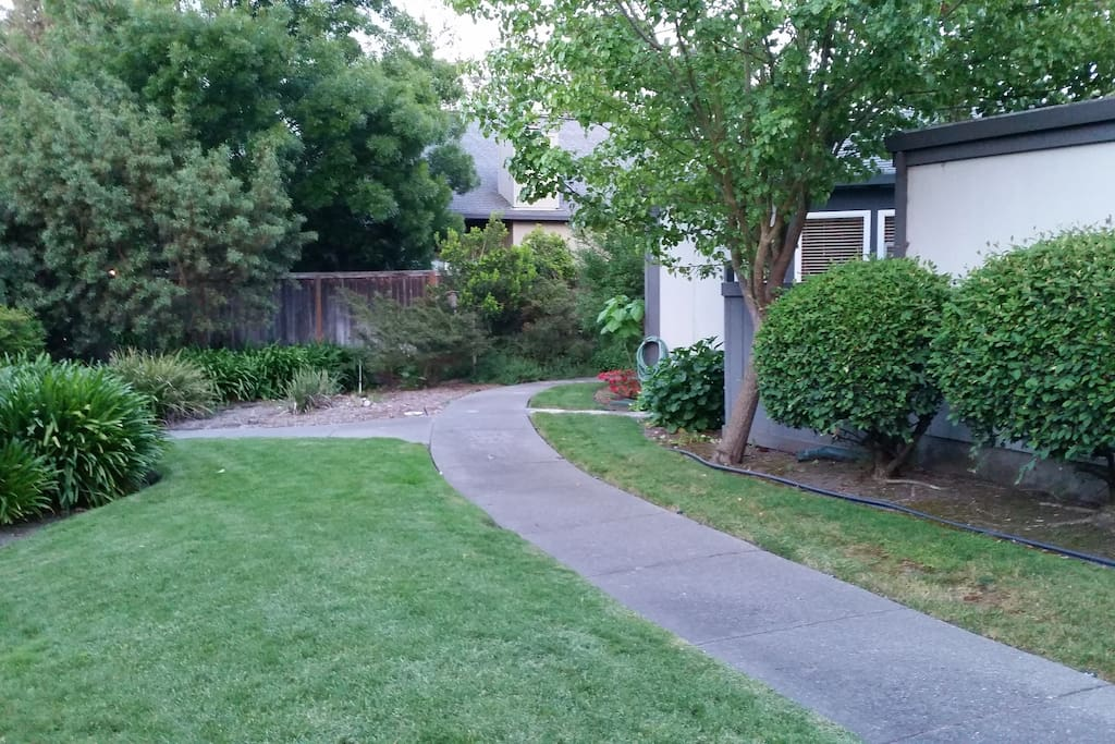 Path to front Entry. Very tucked away.