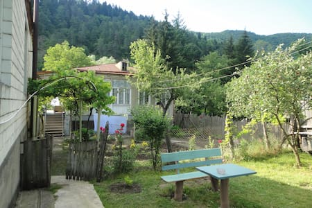 Rooms for rent in Akhaldaba, Borjomi