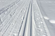 Cross Country ski trails within a mile!