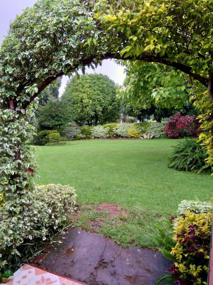 Stefano gardens