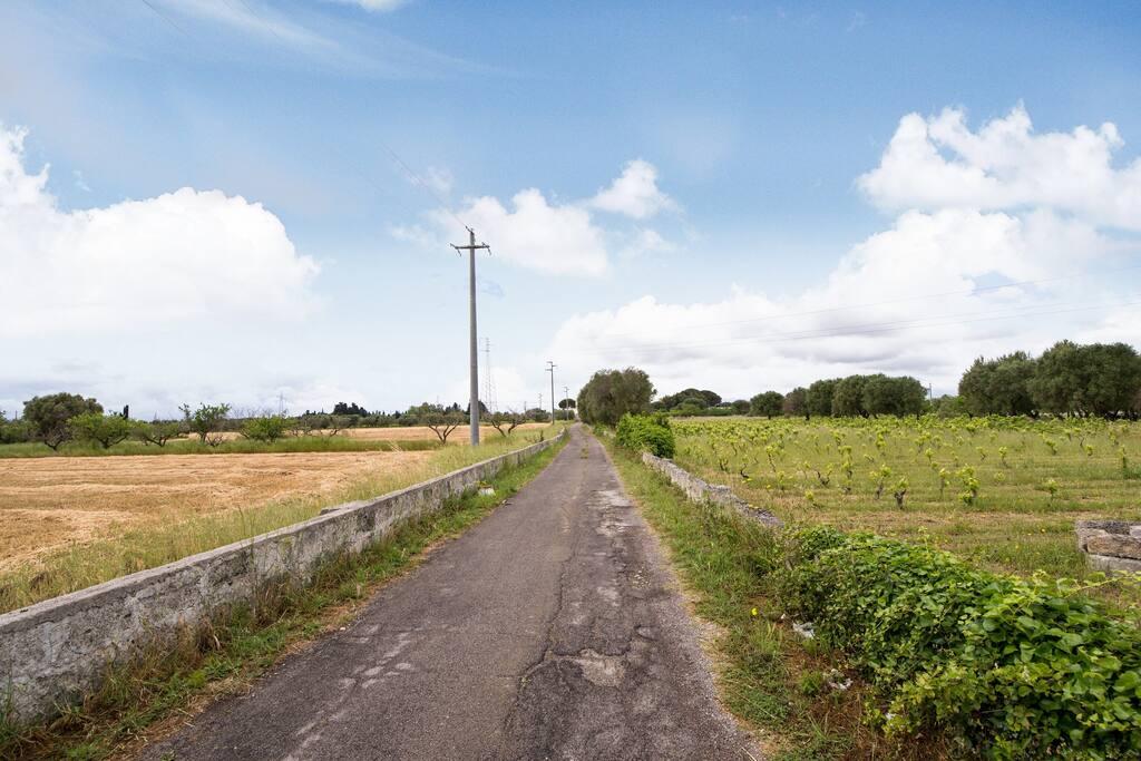 Strada comunale San Oronzo _ Ingresso