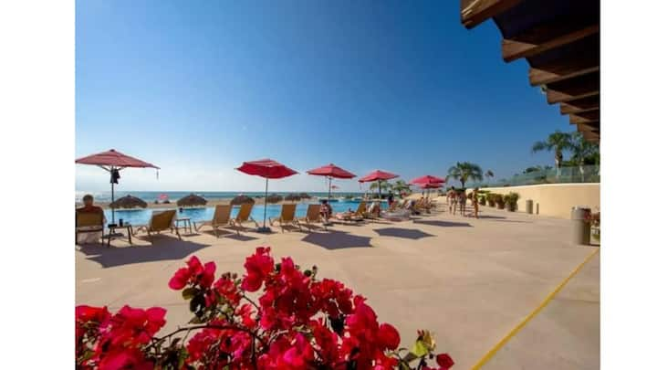 Magnificient Oceanfront 1 bed condo at the Grand Venetian
