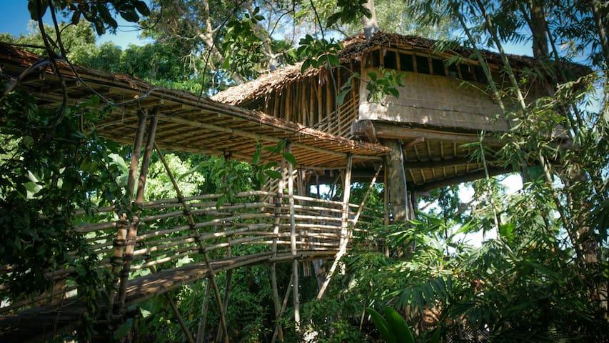Bukit Raya Guesthouse Bamboo Tree House