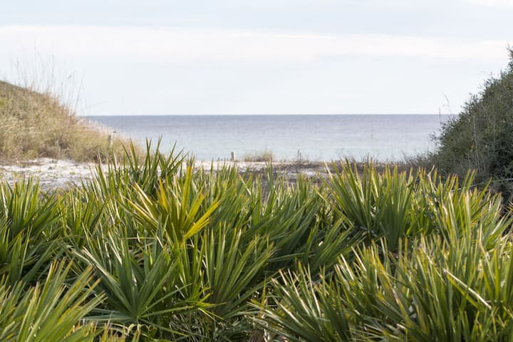 Paradise30a~ Beachy Keen, Beach cottage, Gulf Views, Discounts for Spring!