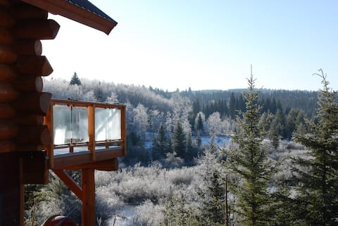 Wilderness log home getaway