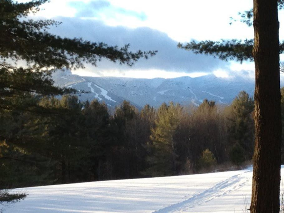 A view of Mt Mansfield from a xc trail 200 yards from the chalet