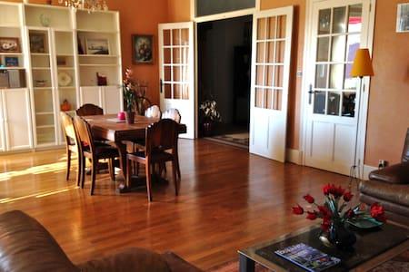 grande chambre dans un appartement t b situé - Voiron - Flat