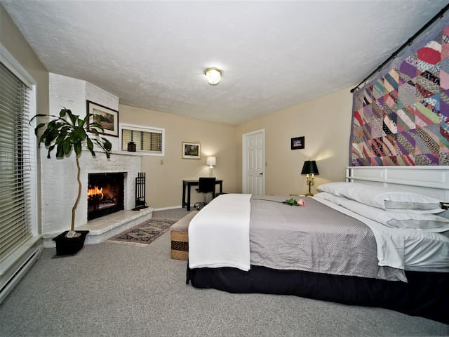 Bedroom with fireplace, walk-in closet, and queen-size bed.