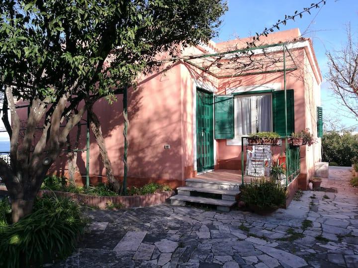 A casa di Donna Nunzia
