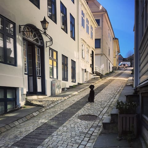 Cosy loft in one of Bergen´s oldest streets