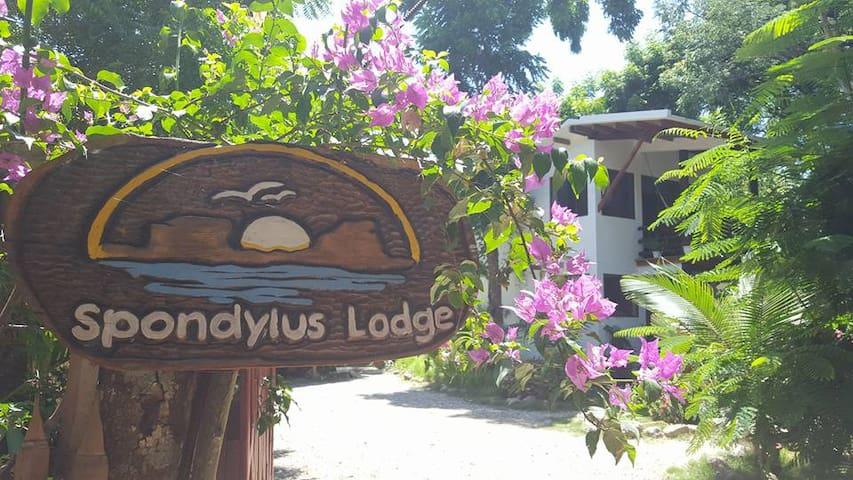 Spondylus Lodge Hotel - Ayampe - House