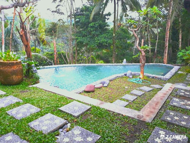 Tropical Ubud Forest View Villa