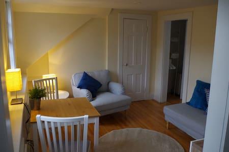 Sunny 1-bed apt in central Boston's Bay Village