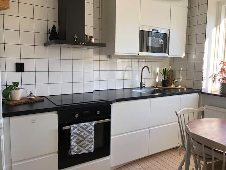 Beautiful apartment 9 min from Central station