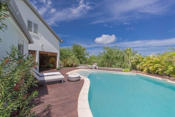 Très belle villa, piscine avec plage immergée... - Saint-Paul - Villa