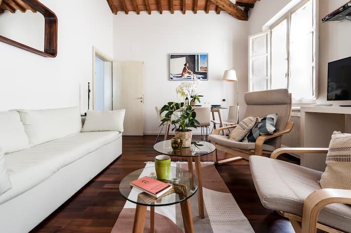 Apartment in historical center Pisa - 2