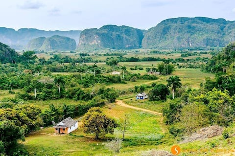 Villa La Tropical, Viñales ile tanışın