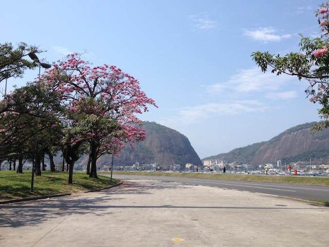 Flamengo Park at a walking distance/ Aterro do Flamengo a poucos passos.