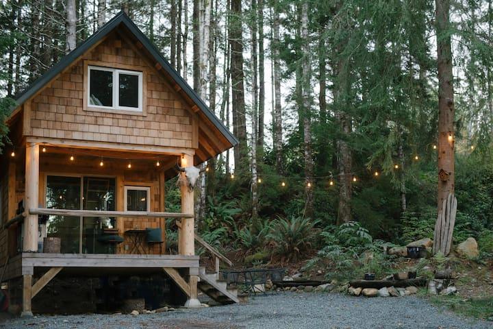 Cabin, outdoor patio set & lights.