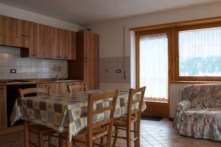 Casa TreCime, luminosa e panoramica - Auronzo di Cadore