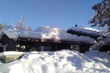 Bjorli, romslig koselig hytte med 7 senger + hems