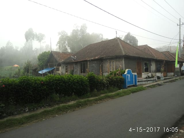 Villa of mountain bromo, natural