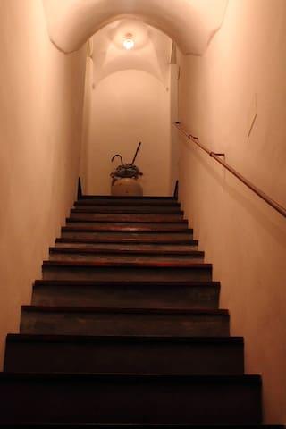 la scala del malvasia