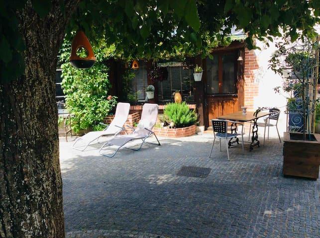Maison de charme au cœur d'un jardin à Olivet