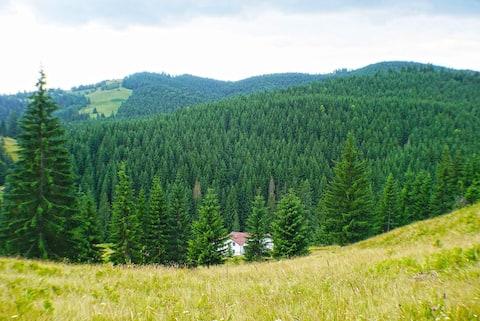 Rija Land, αγροτικό καταφύγιο στα βουνά Bucovina