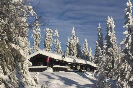 Flott hytte i nydelige omgivelser!