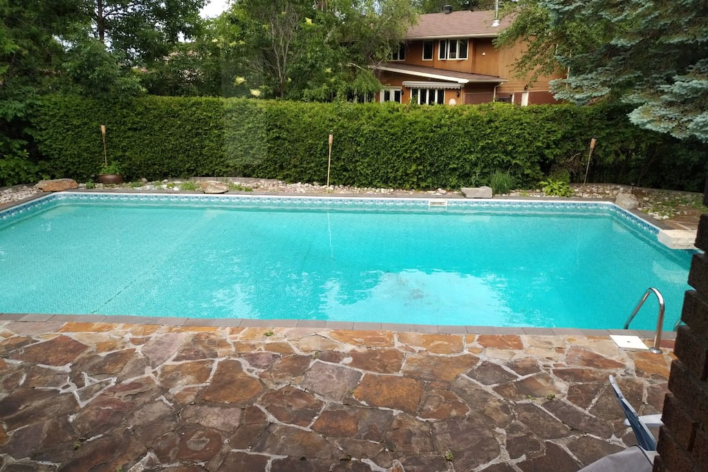 Backyard oasis of tranquility in the 40 feet by 20 feet salt water pool.