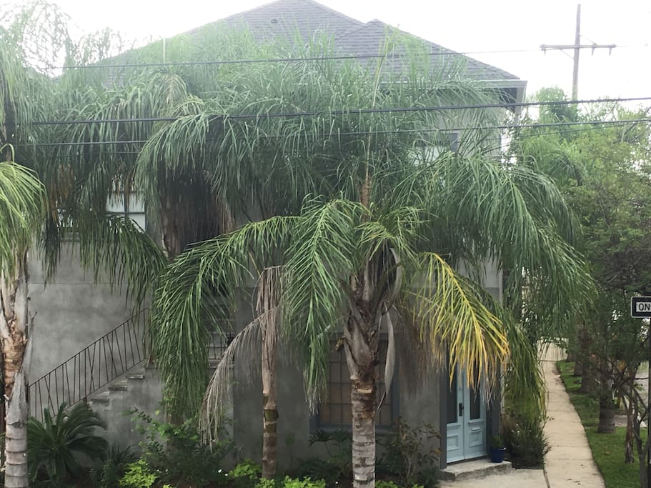 tropical front of house