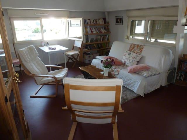 Oloron-Sainte-Marie : appartement avec vue